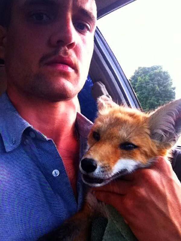 fox-rescue2