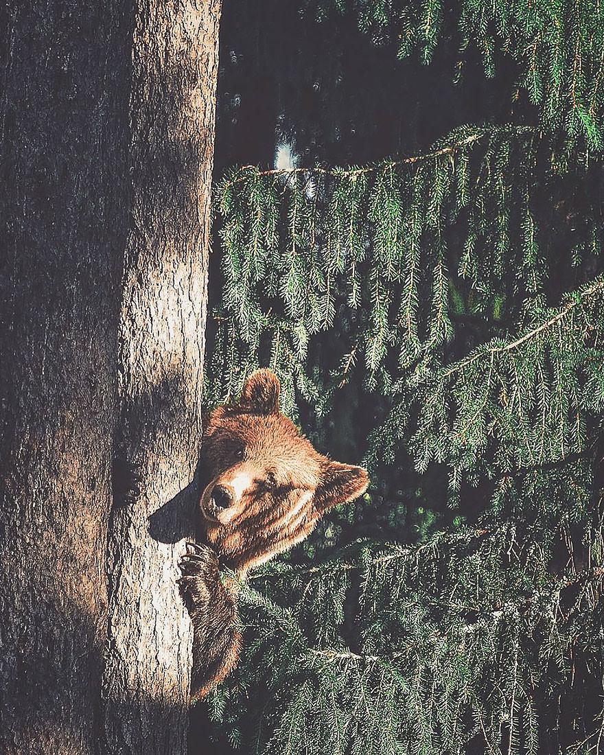 Fotógrafo_captura_el_espíritu_del-06