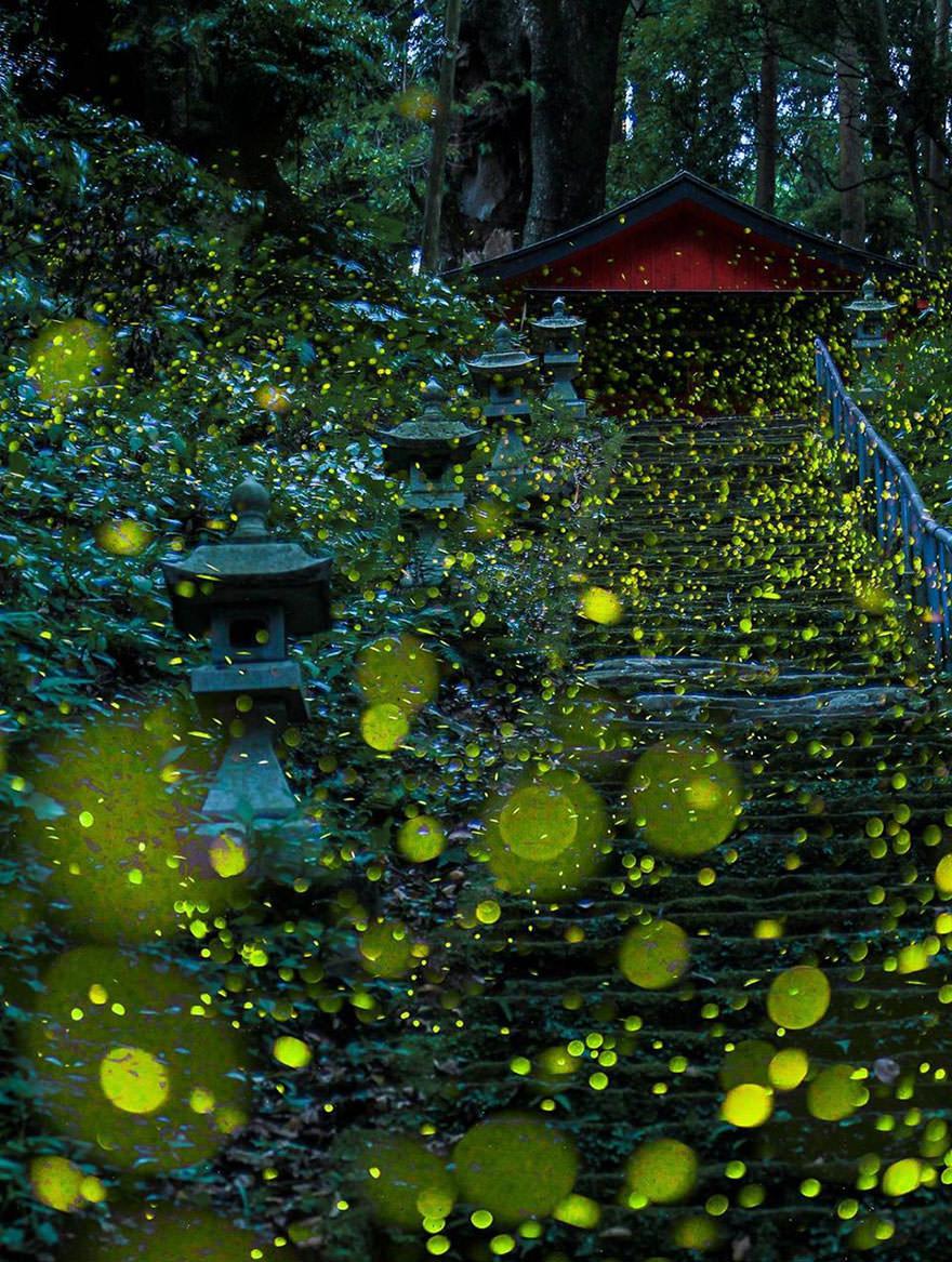 Image credits: Hiroyuki Shinohara
